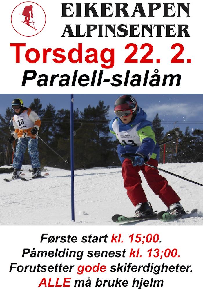EIK 02 22 PARALELLSLALÅM-kopi